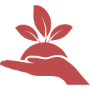 plant-red